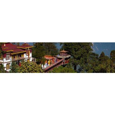Darjeeling House blend