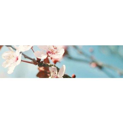 Lyseblå matcha skål | Hinode