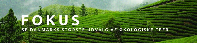 Fokus - Danmarks bedste økologiske teer