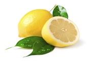 Citrongræs